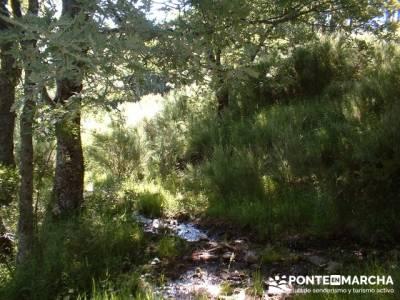 Ruta Lago de Sanabria - Laguna de Sotillo; viajes enero